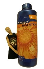 HEAD MASTA by Canadian Xpress