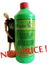 LEAF GREEN by Dutch Pro