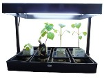 GROW LIGHT GARDEN fluorescent propagation lighting unit