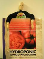 HYDROPONIC TOMATO PRODUCTION